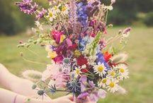 Bloemen Overzicht