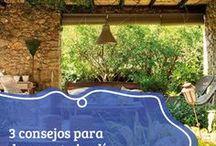 Jardinería / Aporta armonía, serenidad y crea un ambiente distendido para disfrutar la vida familiar; te ayudamos a elegir flores y arbustos para lograr un paisaje único.