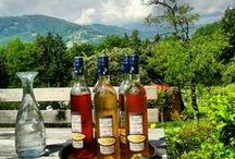 ℹ️ VINO / Wijn is een alcoholische drank die ontstaat door het vergisten van het sap van druiven. Het volledige proces van wijnbereiding noemt men vinificatie.   CHEERS ;)