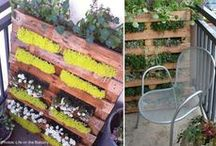 Pallet Ideas / by Coral Antler Creative