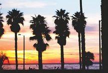 Venice Beach to do + see / by J E N N I F E R