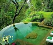 Bassins nature