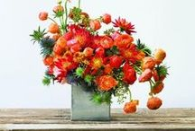 F L O W E R S / Beautiful and inspiring flowers and arrangements. / by Wind and Willow Home