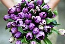 Purple Wedding