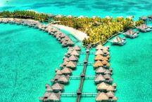 - Travel + Adventures -