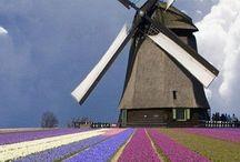Windmills / Windmills around the world
