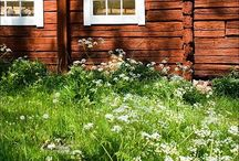 M y  S u m m e r  H a v e n / This is a compilation of Scandinavian summer cottage boards from two of my other accounts:-).