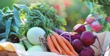 Vegetable Gardening | Garden Ideas / Vegetable gardening doesn't have to be hard. Find easy tips on indoor planting, year round planting, DIY garden beds, how to grow herbs, and container gardening.