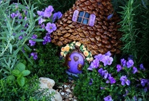 Fairy Garden / by Adara Graham