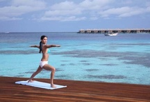 Health & Wellbeing / Coco Spa at Coco Bodu Hithi situated over crystal waters and Coco Spa at Coco Palm Dhuni Kolhu beneath lush tropical vegetation, both offer the promise of wellbeing and complete relaxation.
