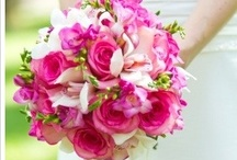 PINK Inspiration / from soft to vibrant, but always sophisticated / by Madison Floral