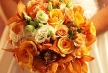 FALL COLORS Inspiration / vibrant, rich and playful / by Madison Floral