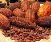 Cacao / El cacao es uno de los alimentos con más propiedades antioxidantes.