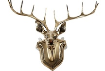 .antlers.