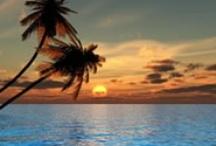 .beach.