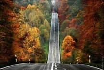 .fall.