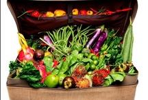 Field Trips & Travel / by Sarah Hortman, Registered Dietitian Nutritionist