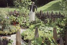 Groen - in de BUURT / Braakliggende terreinen veranderen in een mooie prettige plek voor de hele buurt en door samen de handen uit de mouwen te steken, leer je elkaar beter kennen.  Iedereen kan leren van een buurttuin. Kinderen leren waar hun eten vandaan komt en hoe ze dit kunnen verbouwen.  Betrokkenheid naar elkaar wordt groter, waardoor mensen voor elkaar klaar staan. Lees en zie hier voorbeelden en inspiratie voor je eigen Buurt- (moes) tuin.