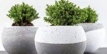 Cemento Creativo / Con el #cemento creativo podrás crear hermosos objetos para la #decoración interior de tu #hogar #HomeDeco. Podrás crear #colgantes originales y #adornos para la #navidad.