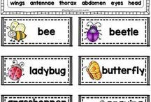 Insects / Butterflies / Fun and engaging activities to help teach all about insects.