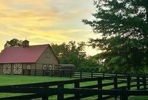 Barns & Cabins / by Mike Swanson