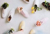 | Floral | / flowers, plants, succulents, plant care, greenery