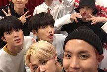 BTS / •RM •JHOPE  •SUGA •JIN •JIMIN •JUNGKOOK •TAEHYUNG ( V )