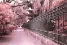 ❀...Pink & Grey