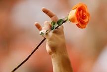Burnt Orange Valentine / Happy Valentine's Day, Longhorns! / by Texas Longhorns