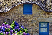 English Country Cottages / by Elizabeth Atwood