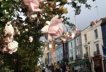 West London Living / ~And the Surrounding Areas That I Love~ / by Elizabeth Atwood