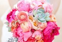 flowers, flowers and mooore flowers