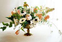 florale / gorgeous flowers