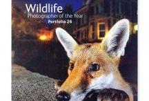Wildlife Photographer of the Year 52