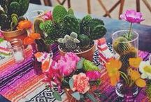 Party Planning / by 🌵 b. g l a d y s  🍉