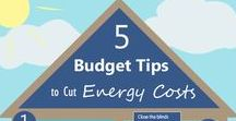 Budget: Frugal living tips / Budget stretchers, planners, debt reduction strategies and frugal DIY projects -- upcycle your stuff -- for financial freedom.