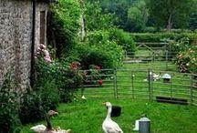 Coups de coeur maisons/jardins/lieux