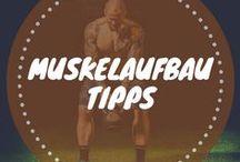 Muskelaufbau Tipps / Muskelaufbau Tipps gibt dir hilfreiche Tipps zum erfolgreichen Muskelaufbau, Ratschläge zur Ernährung und die besten Übungen und Workouts zum selbst machen.