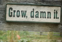 Garden Quotes & Signs