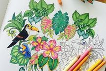 Coloring Ideas & Inspiration / These coloring pages were completed with vibrancy and fun. We hope they inspire you to start coloring too!