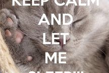Keep calm and ... / Loads of keep calm things mostly funny