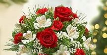 Holiday & Christmas Flowers & Gifts / We offer a festive and beautiful collection of holiday gifts & flowers.  Same day delivery available locally & nationwide.