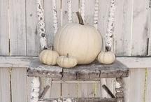 Fall / by Elizabeth Akens