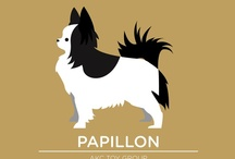 pup pup madness / Everything dogs, be warned there are lots of papillons on here