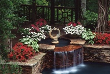 Outdoor Gardening, etc... / by Barbara Phillips