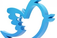 #Twitter / Tips and tricks on how to utilize Twitter for business purposes.  / by Brafton, Inc.