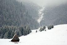 Never Summer / I ski.