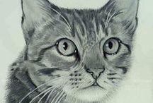 Dibujo De Gato Realista A Lapiz