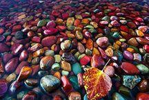 Intriguing Pins Amazing Pics
