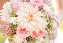 Bridal & Wedding